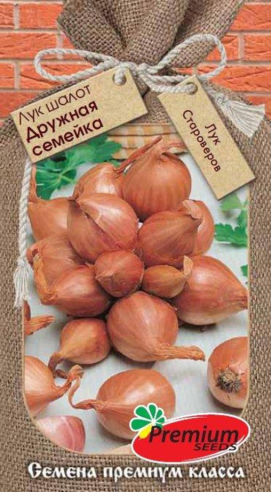Лук шалот или семейка, семена